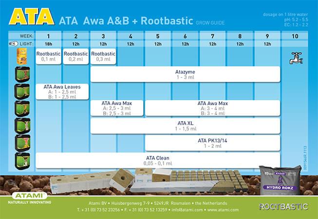 ATA-AWA-ROOT.jpg