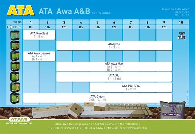 ATA-AWA.jpg