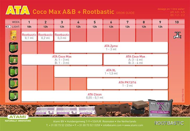 ATA-Coco-Max-AB-ROOT.jpg
